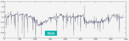 눈깜박임 Blink 변화